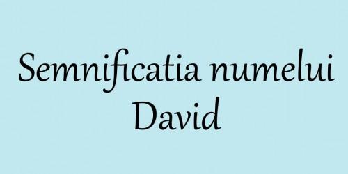 semnificatia-numelui-David-2